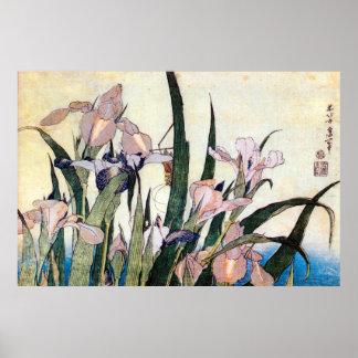 杜若ときりぎりす, 北斎Iris och gräshoppa, Hokusai Poster