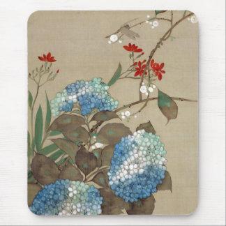 紫陽花 抱一vanlig hortensia, Hōitsu Musmatta