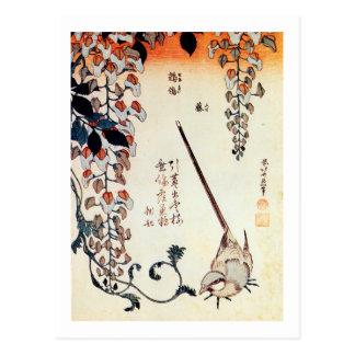 藤にセキレイ, 北斎Wagtail och Wisteria, Hokusai, Ukiyo-e Vykort