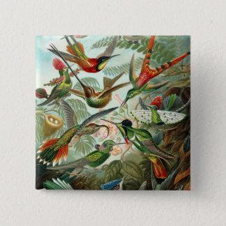 12 amerikansurrfåglar föder upp målat dragit standard kanpp fyrkantig 5.1 cm