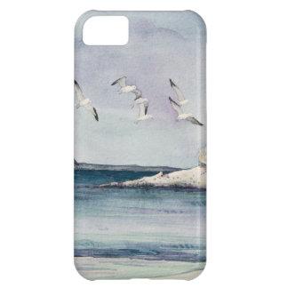 1774 fiskmåsar på den sandiga stranden iPhone 5C fodral