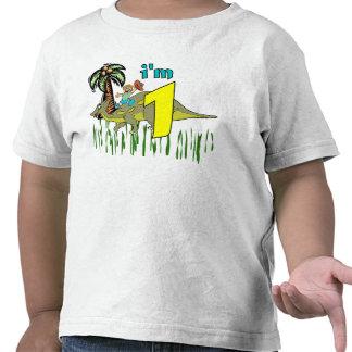 1st födelsedagdinosaur för pojke tröja