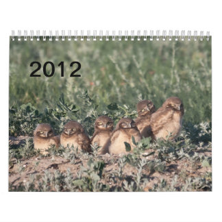 2012 gräva ugglor kalender