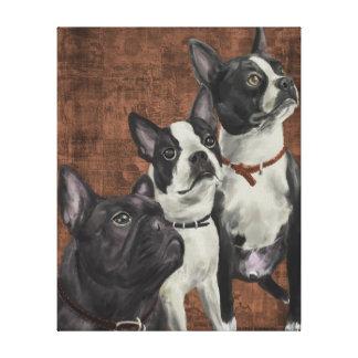 2 Boston Terriers och fransk bulldogg Canvastryck