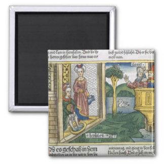 2 Samuel 11 1-5 David ser den Bathsheba badningen, Magnet