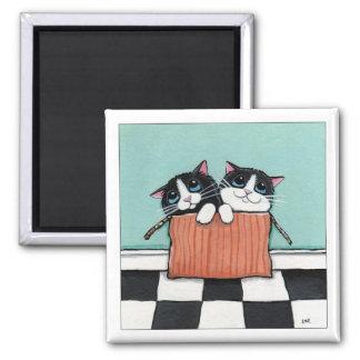 2 smokingkatter i för kattkonst för boxas | en