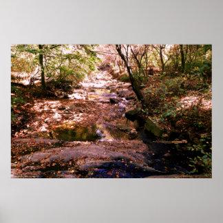 36x24 affisch - fotoflod