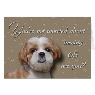 65efödelsedaghund hälsningskort