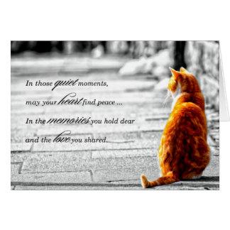 A-PAL - Orange tabby katthusdjursympati Hälsningskort