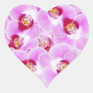 Abstrakt bakgrund av en Orchidblomma fotograferar Hjärtformat Klistermärke