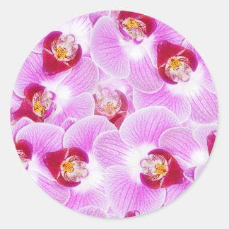 Abstrakt bakgrund av en Orchidblomma fotograferar Runt Klistermärke