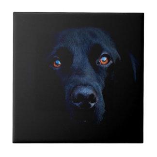 Abstrakt djur mörk hund kakelplatta