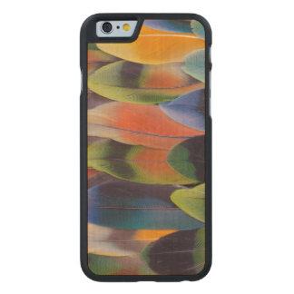 Abstrakt för Lovebirdsvanfjädrar Carved Lönn iPhone 6 Skal