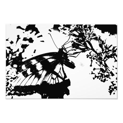 Abstrakt svartvitt fjärilstryck fototryck