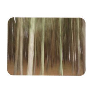Abstrakt trädfleximagnet magnet