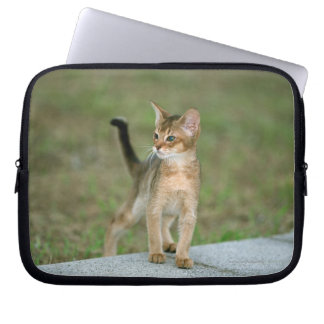 Abyssinian Laptop Fodral