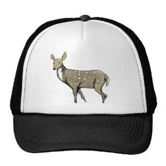Adagio för Bambi Keps