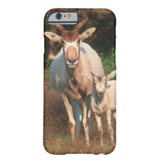 Addax/vitantilop/Screwhorne antilop Barely There iPhone 6 Skal