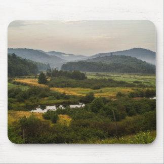 Adirondack berg - dimma - New York - träskland Mus Mattor
