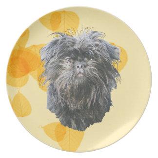Affenpinscher på bladguld dinner plates