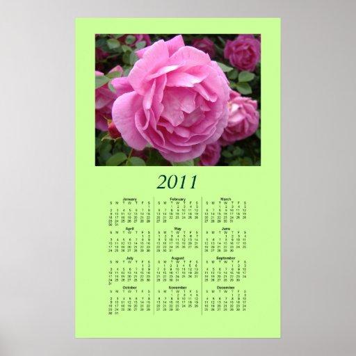 Affisch för 2011 kalender - rosa ros
