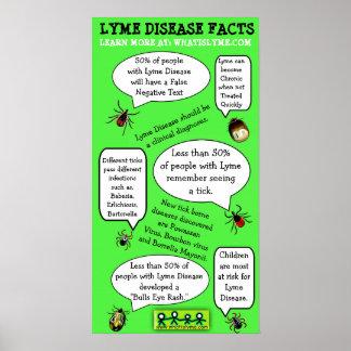 Affisch för fakta för Lyme sjukdommedvetenhet