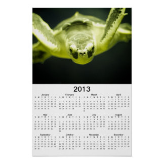 Affisch för kalender för havssköldpadda 2013
