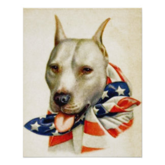 Affisch för krig för hund för tjur för grop för vi poster