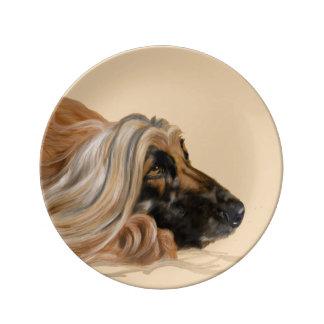 Afghansk hund porslinstallrik