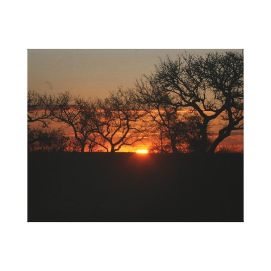 Africa sunset canvastryck