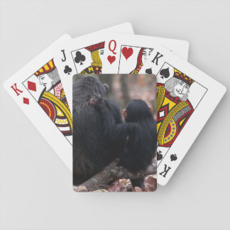 Afrika East Africa, Tanzania, Gombe medborgare 2 Casinokort