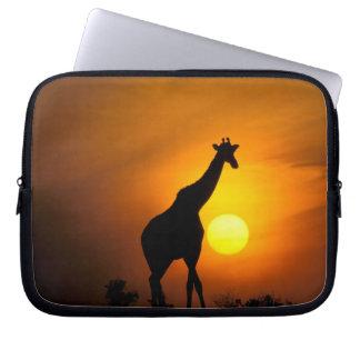 Afrika Kenya, Masai Mara. Giraff (giraff Laptop Sleeve
