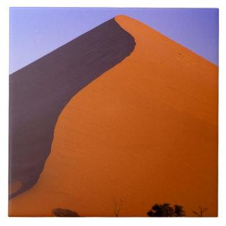 Afrika Namibia, Namib NP, Sossusvlei, Sand Kakelplatta