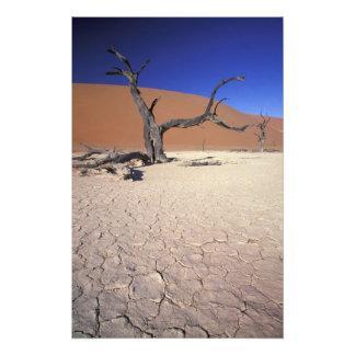 Afrika Namibia, Sossusvlei region. Sanddyner Fototryck