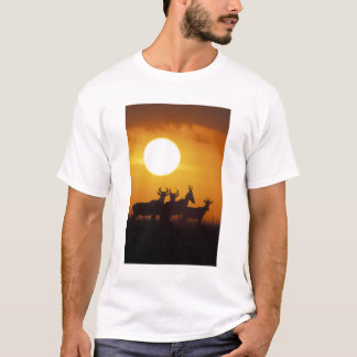 Afrikan Kenya, den MasaiMara leken reserverar, T-shirt