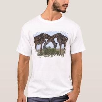 Afrikan Kenya, den MasaiMara leken reserverar, två T-shirts