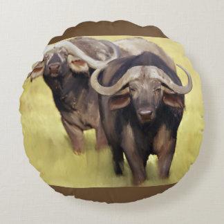 Afrikansk buffel rund kudde