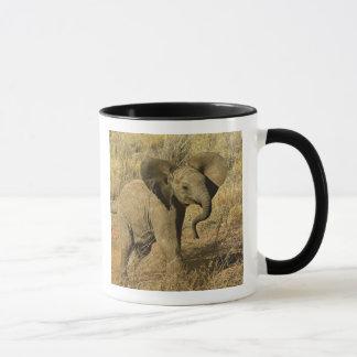 Afrikansk elefant för baby, Loxodonta Africana, Mugg
