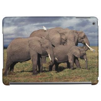 Afrikansk elefant för baby med familjen