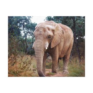 Afrikansk elefant i busken canvastryck