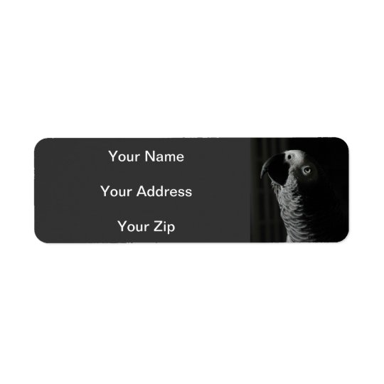 Afrikansk grå färgpapegojareturetiketter returadress etikett