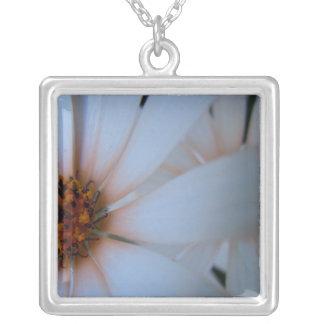Afrikanska daisy mig silverpläterat halsband