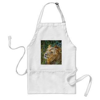 Afrikanska male lejona matlagningförkläden förkläde