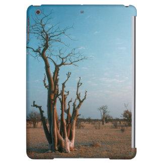 Afrikanskt Moringo träd på slätten, Etosha