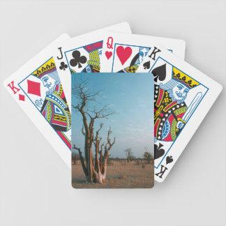Afrikanskt Moringo träd på slätten, Etosha Spelkort