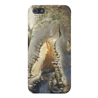 Agape krokodil iPhone 5 cover