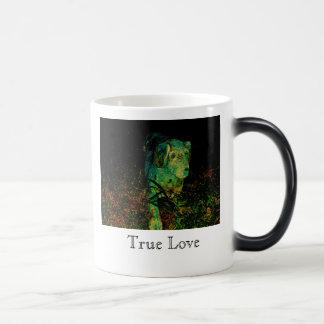 Äkta kärlek mugg