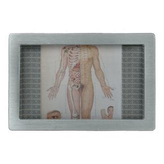 Akupunktur pekar förkroppsligar mycket beklär
