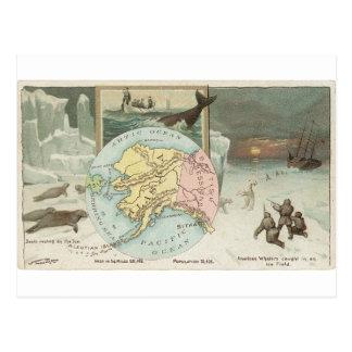Alaska vintagekort 1889 vykort