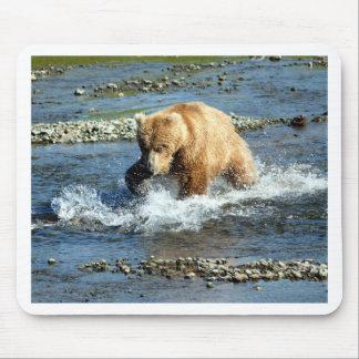 Alaskabo björn musmatta